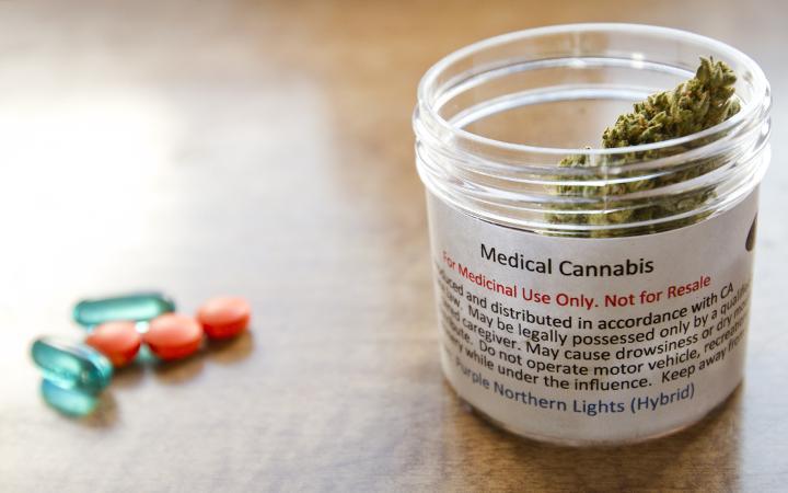 Cannabis w walce z bólem chronicznym, CannApteka.pl
