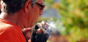 nasiona-marihuany-uprawa-nasion-marihuany-konopia-thc-cbd-palenie-jointa-palenie-rolowanie-palenie-na-zewnatrz
