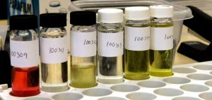 or-probki-medycznej-marihuany-laboratiorium-laboratorium-badanie