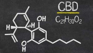 cbd-benefity-efekty-pozytywne