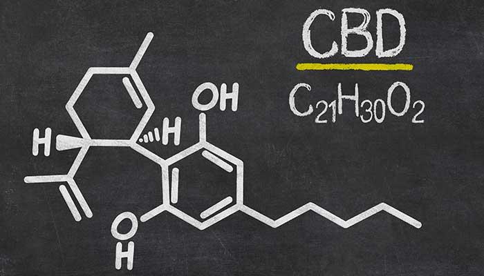 CBD – co to jest?, CannApteka.pl