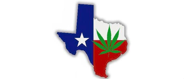Zniesiona kara więzienia za posiadanie cannabis w Teksasie, CannApteka.pl