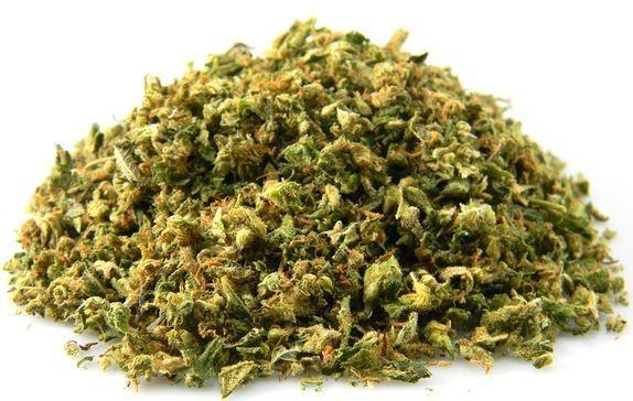Znaleziono marihuanę w publicznej toalecie w Londynie, CannApteka.pl