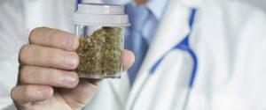 Legalna marihuana obniża wykorzystanie opioidów, CannApteka.pl