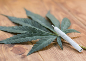 Wpływ marihuany na pamięć, CannApteka.pl