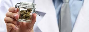 Cannabis w walce z grypą, CannApteka.pl