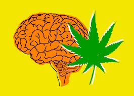Czy medyczna marihuana jest odpowiednia dla ciebie?, CannApteka.pl