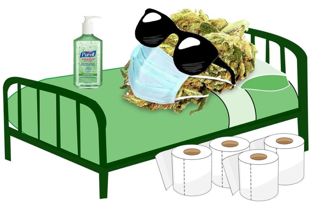 Czy Powinieneś Palić Marihuanę Podczas COVID 19?, CannApteka.pl