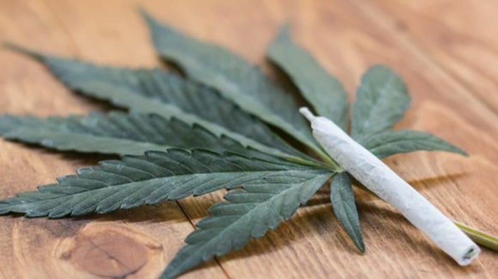 Pandemia powoduje wzrost sprzedaży marihuany, CannApteka.pl