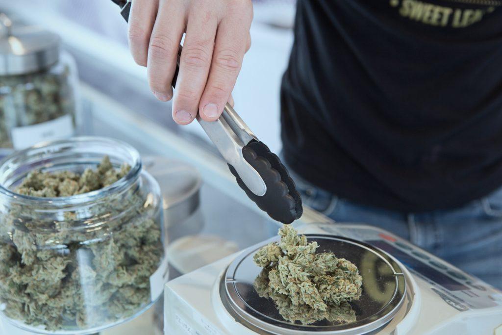 Marihuana Zmniejsza Wykorzystanie Opioidów, CannApteka.pl
